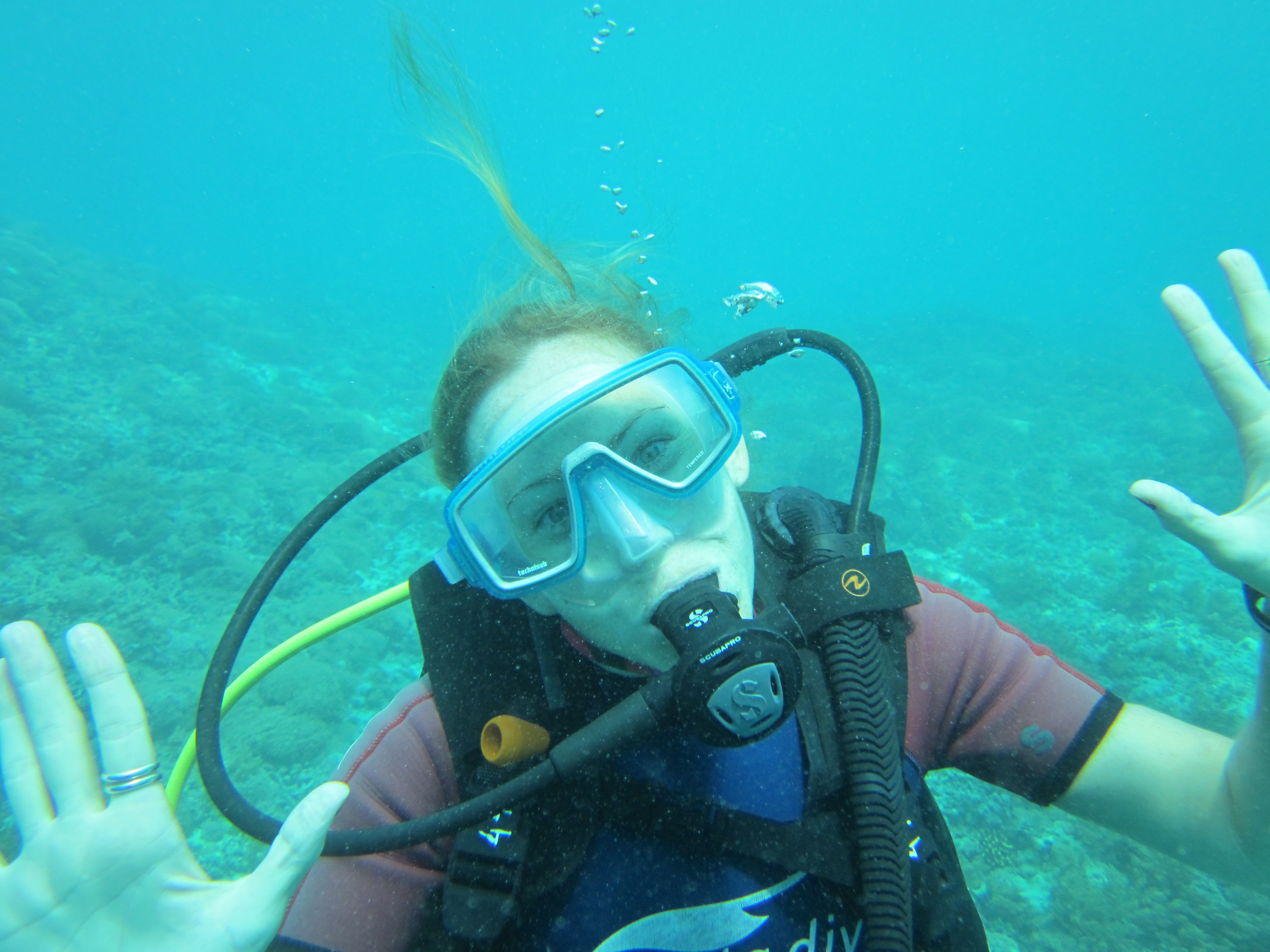 Everything I need to know, I learned from Scuba (& my instructor)